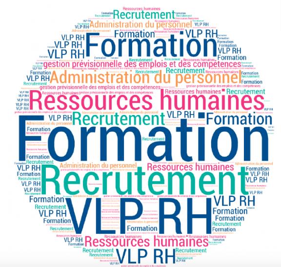 VLP-ressources-humaines-competences